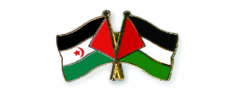 westernsahara_and_palestine.png